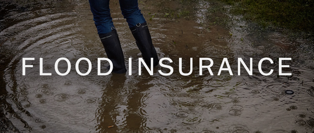Flood Insurance in Morehead City, NC